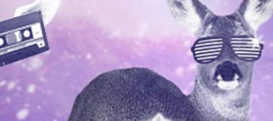 (2015-02-08) MUTEK @ IGLOOFEST